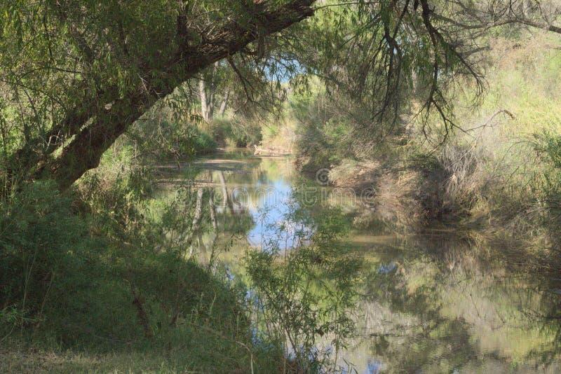 483田园诗岸边的风景圣佩德罗亚利桑那 库存图片
