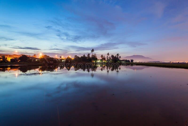 稻田在大山脚槟榔岛,马来西亚 图库摄影