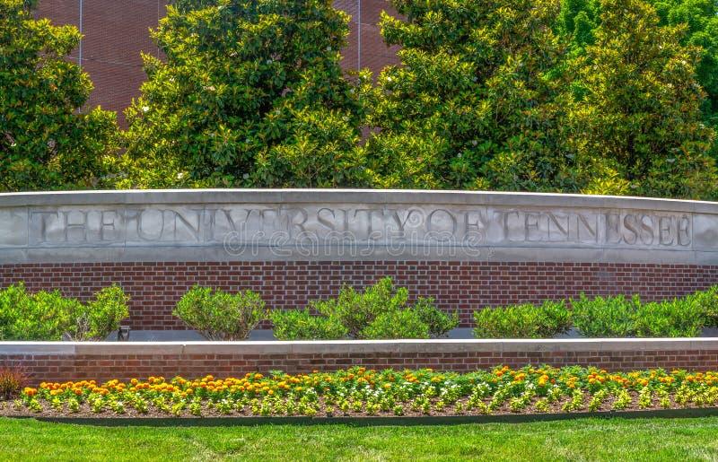 田纳西大学入口和校园走道 图库摄影