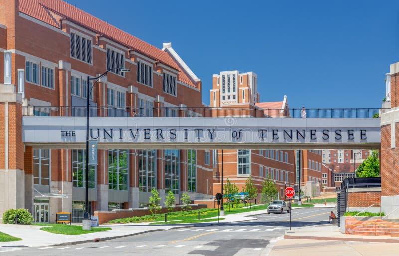 田纳西大学入口和校园走道 库存图片