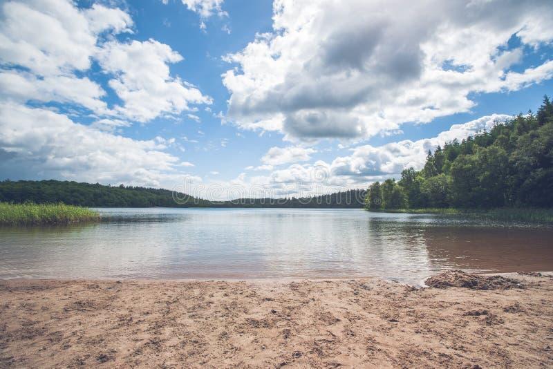 由一个美丽的森林湖的海滩 免版税库存照片
