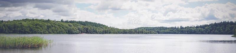 由一个绿色森林的湖风景 免版税库存图片