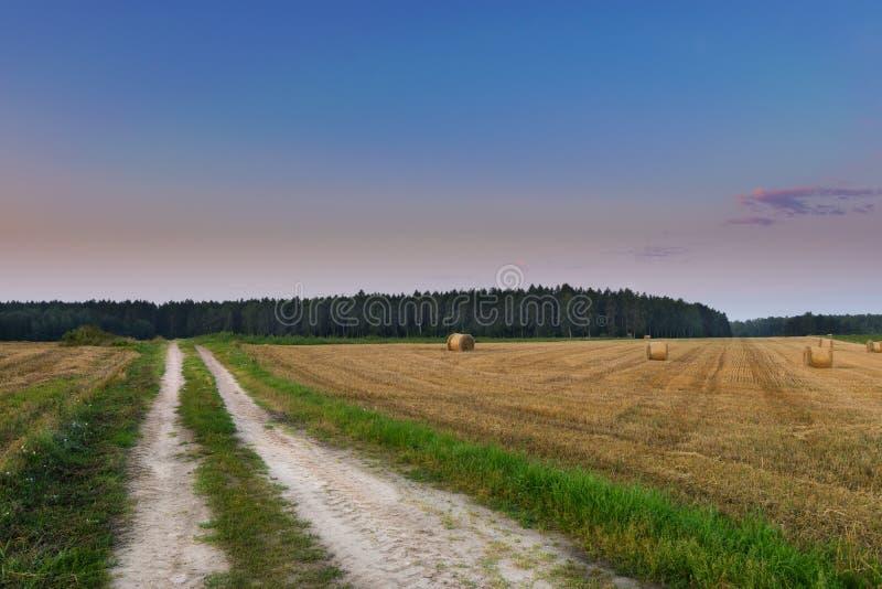 由乡下公路的干草堆 免版税库存图片