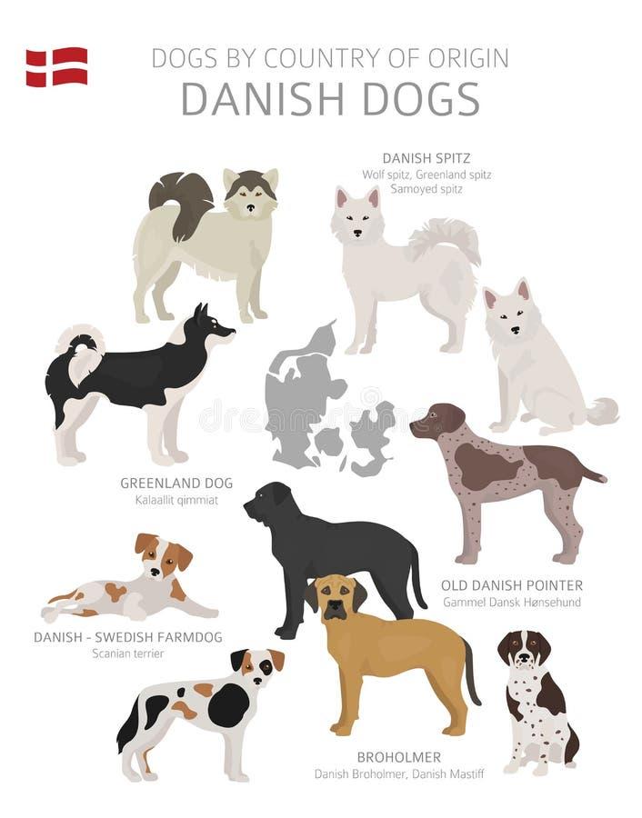 由产地的狗 丹麦狗品种 牧羊人,狩猎,成群,玩具、工作和服务狗集合 库存例证