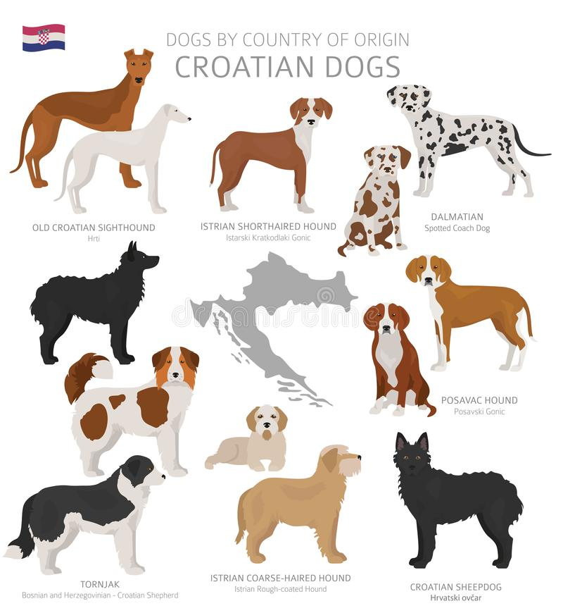 由产地的狗 克罗地亚狗品种 牧羊人,狩猎,成群,玩具、工作和服务狗集合 向量例证