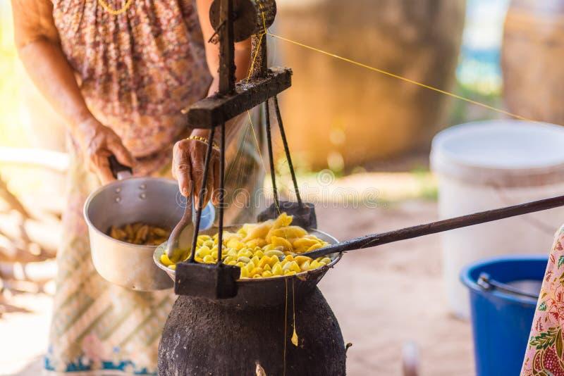由做丝绸螺纹的锅炉的煮沸的黄色桑蚕茧 免版税库存图片