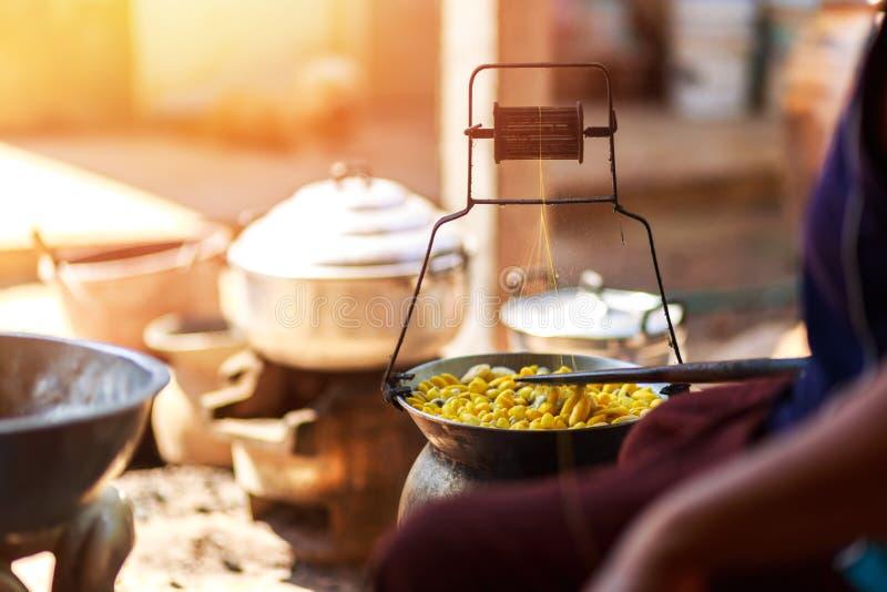 由做丝绸螺纹的锅炉的煮沸的黄色桑蚕茧 图库摄影