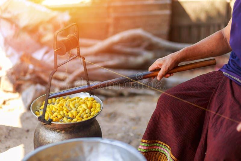 由做丝绸螺纹的锅炉的煮沸的黄色桑蚕茧 库存图片