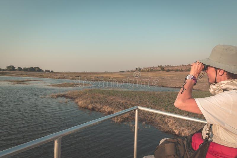 由双眼的游人观看的野生生物,当在Chobe河,纳米比亚博茨瓦纳的小船巡航边界,非洲时 乔贝国家公园, 库存照片