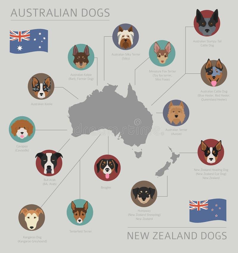 由发源国的狗 澳大利亚狗品种,新西兰 向量例证