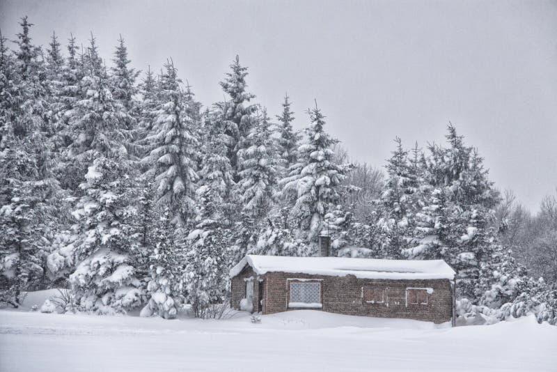 由多雪的森林的猎人小屋 免版税图库摄影