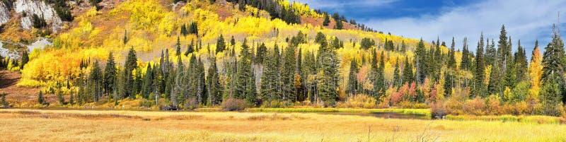 由孑然的银色湖和在大三角叶杨峡谷的布赖顿滑雪场 从远足和木板走道足迹的全景  免版税库存照片