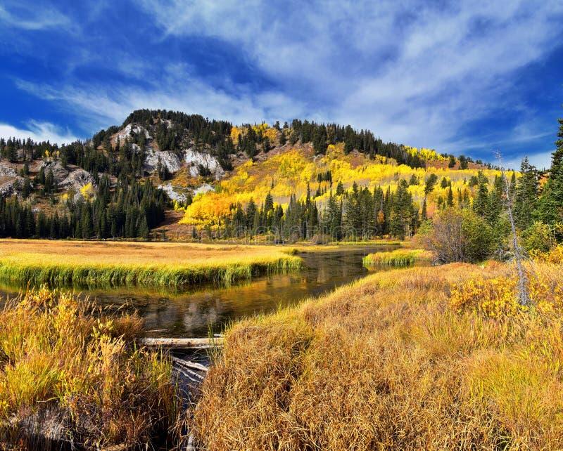 由孑然的银色湖和在大三角叶杨峡谷的布赖顿滑雪场 从远足和木板走道足迹的全景  免版税图库摄影