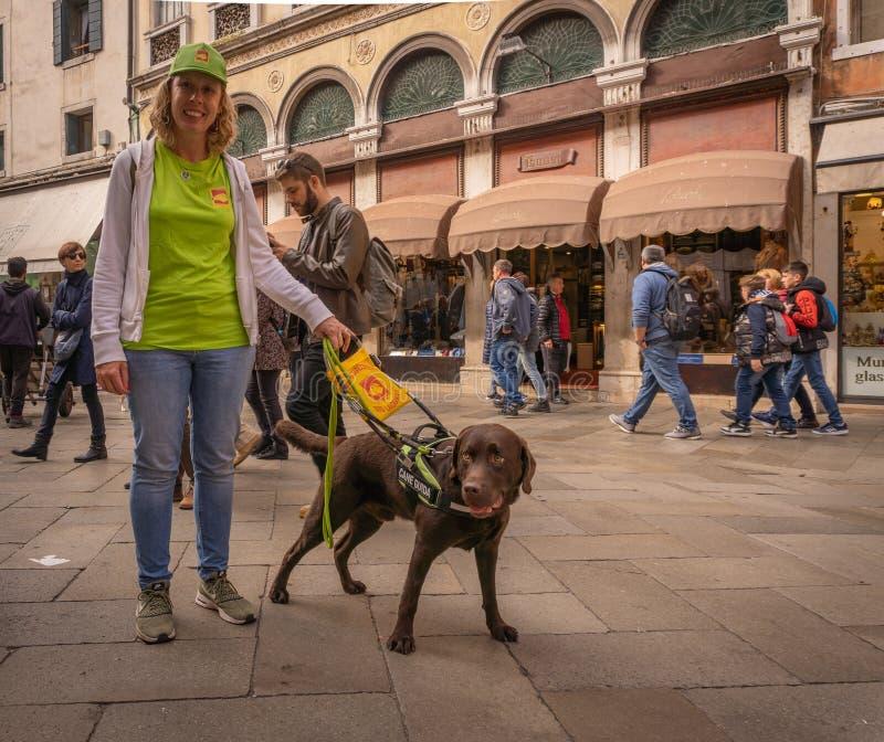 由导盲犬辅助的盲人 免版税库存照片