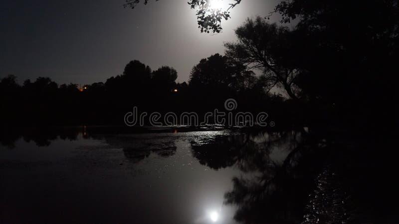 由怀卡托河的夜间在Ngaruawahia,新西兰 免版税库存图片