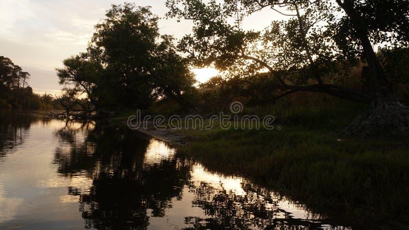 由怀卡托河的早晨日出在Ngaruawahia,新西兰 免版税库存照片