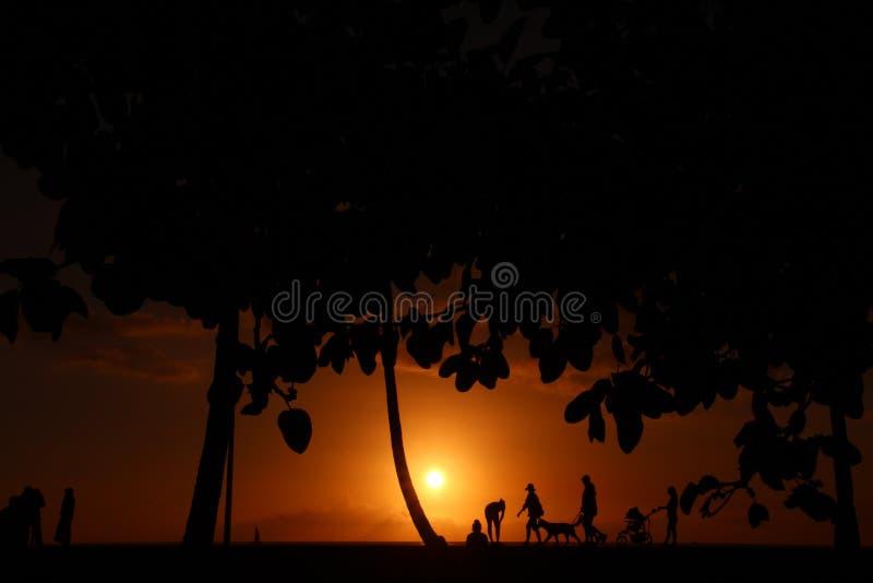 由日落的阴影艺术 库存照片