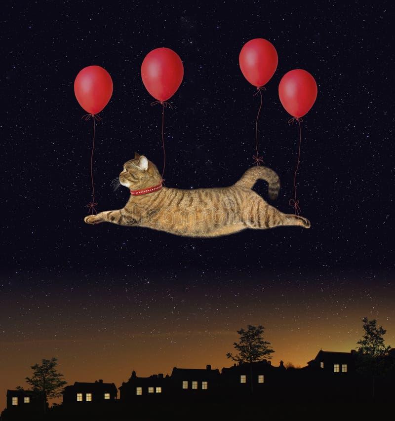由气球的猫飞行在镇上 图库摄影