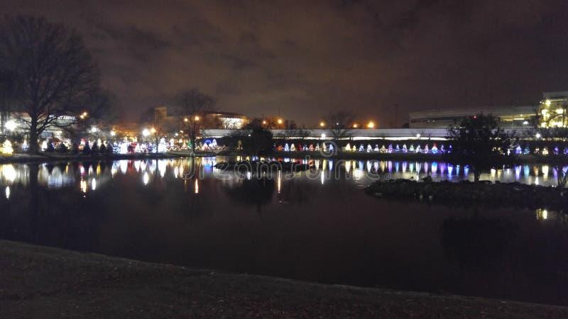 由池塘的圣诞树 图库摄影