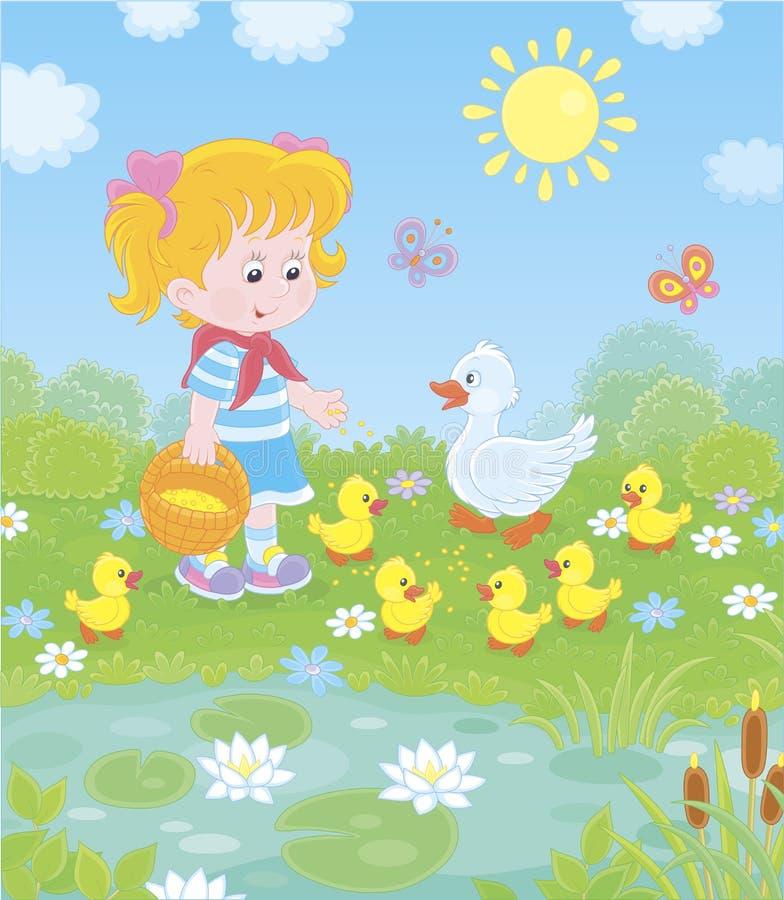 由池塘的女孩哺养的鸭子 库存例证
