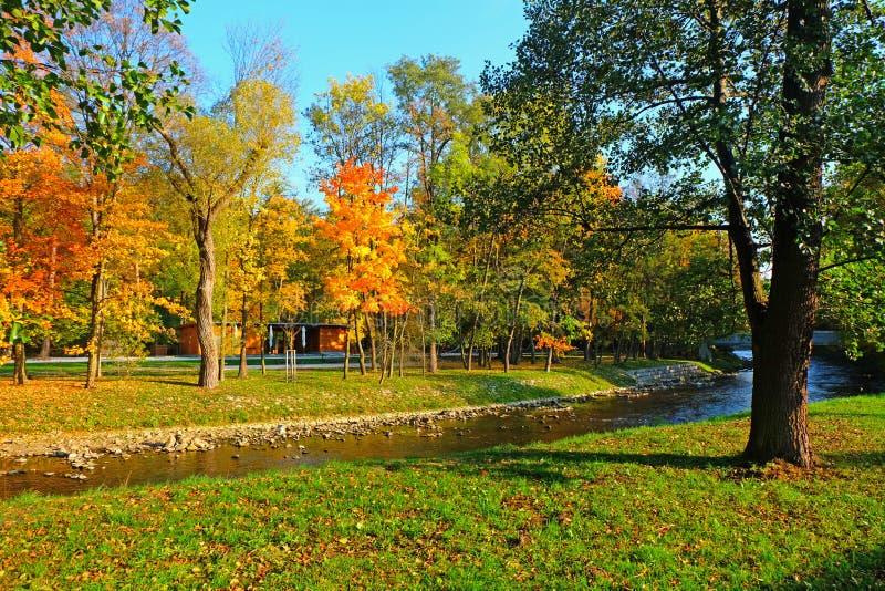 由河和蓝天的五颜六色的秋天树 库存照片