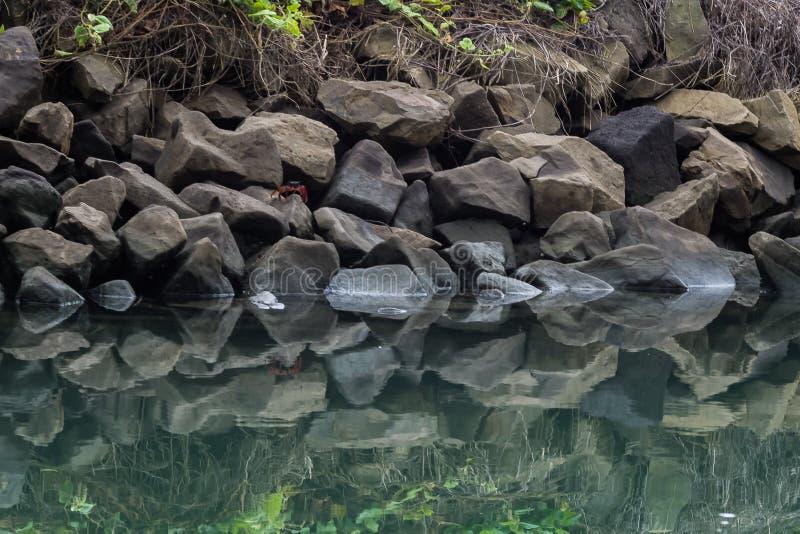 由河和螃蟹的岩石 免版税库存照片