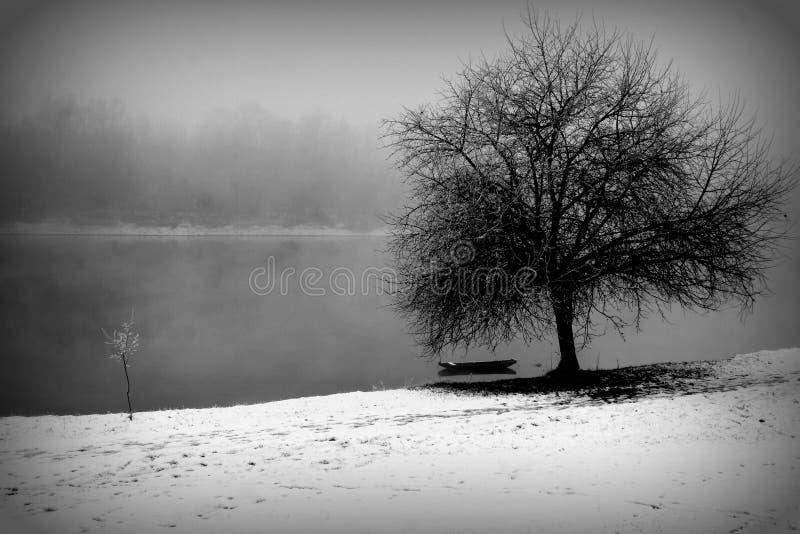 由河的冬天 图库摄影