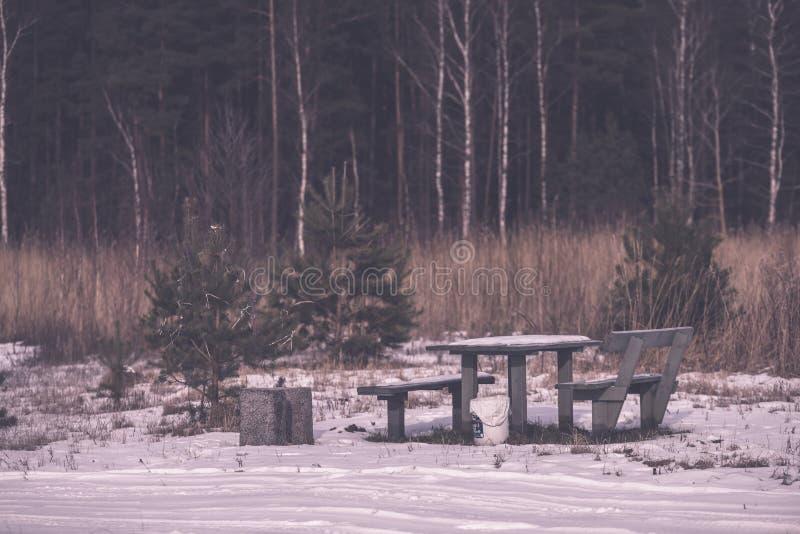 由河的野营的和休息区有长凳和壁炉的- 免版税库存图片