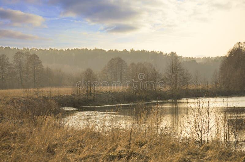由河NemunykÅ ¡ tis的早春天风景, Raigardas谷, ÅvendubrÄ-村庄,立陶宛 免版税库存图片