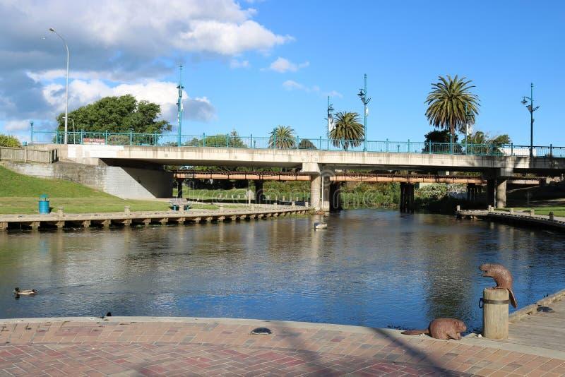 由泰勒河, Blenheim,新西兰的雕塑 库存图片