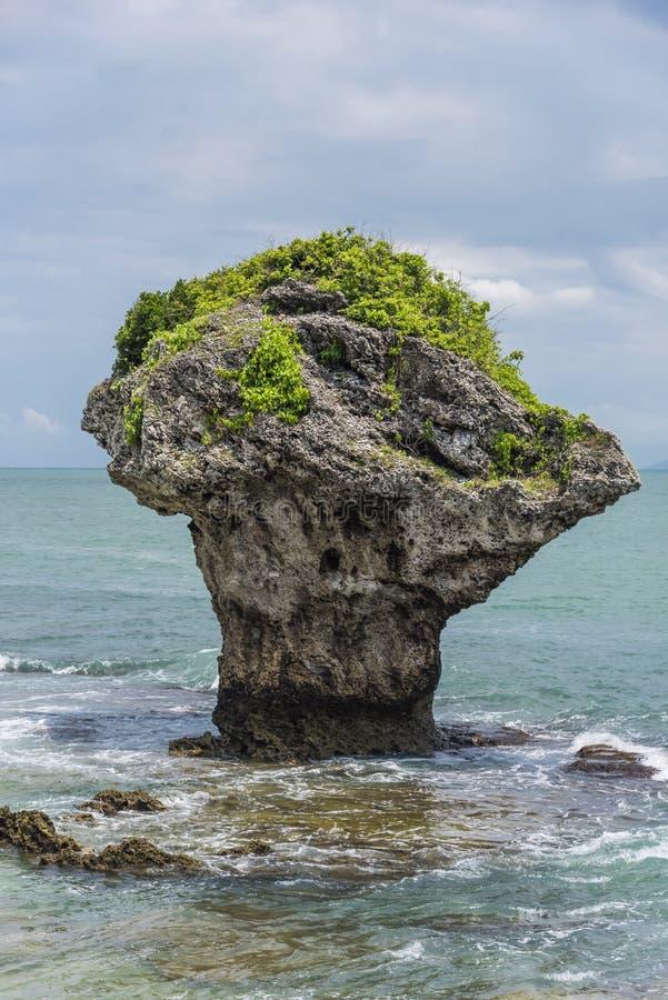 由海岸的独特的岩层 库存照片