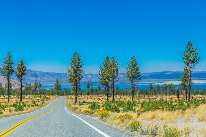 由海岸线的高速公路 免版税库存照片