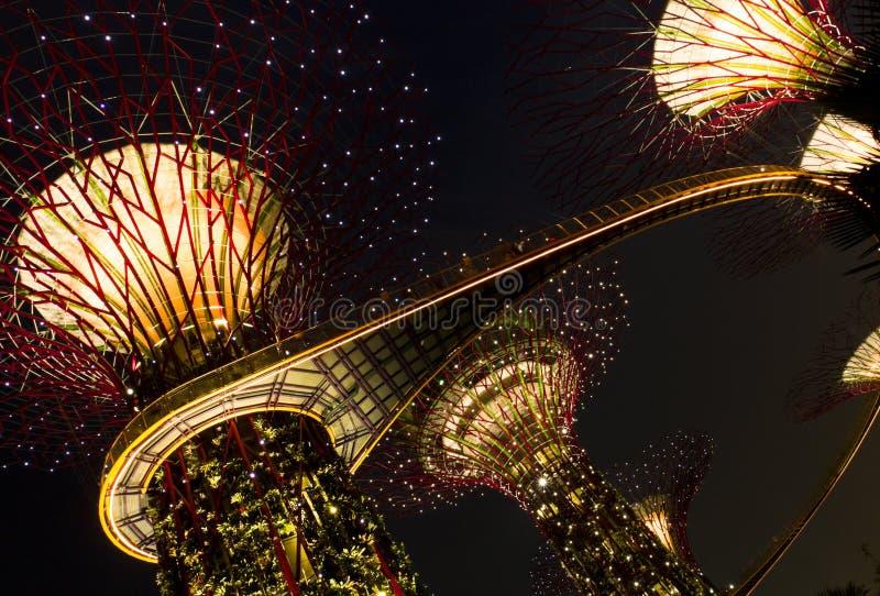 由海湾新加坡的庭院 图库摄影