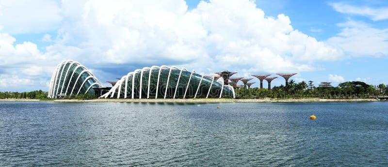 由海湾新加坡的庭院 免版税库存照片