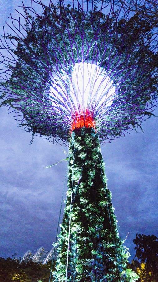 由海湾的庭院在新加坡 图库摄影