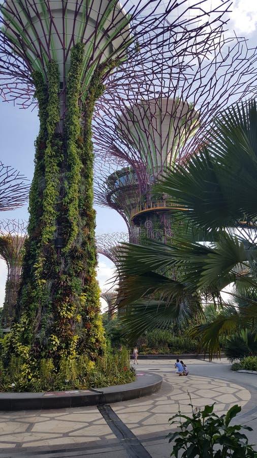 由海湾的庭院 免版税图库摄影
