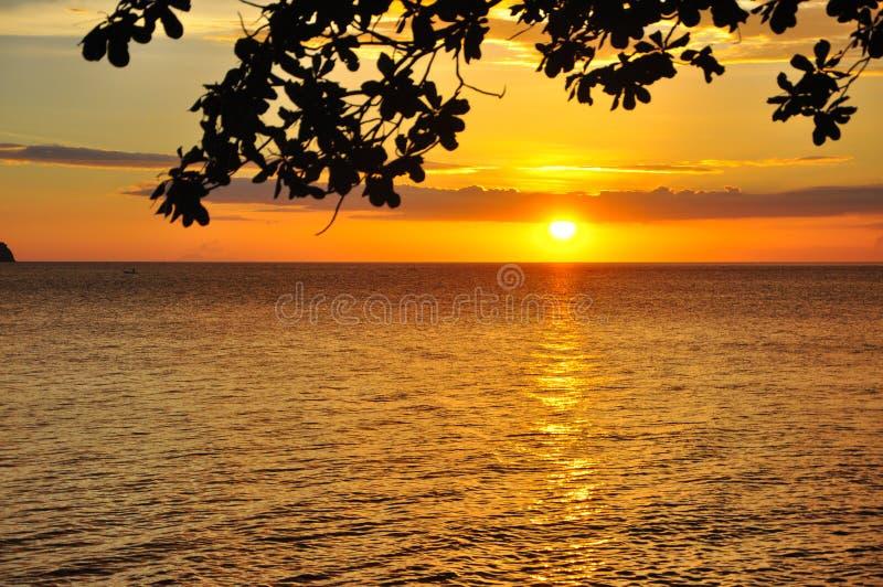 由海湾的金黄日落 免版税库存照片