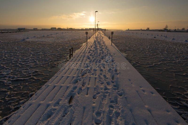 由海滩的冬天日落,冰草稿 库存图片