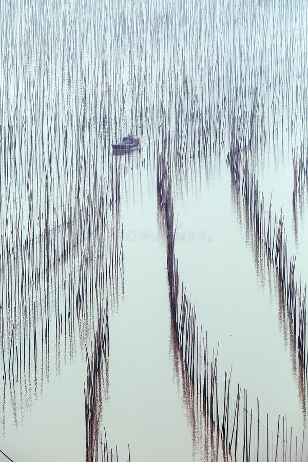 由海的渔夫 库存图片