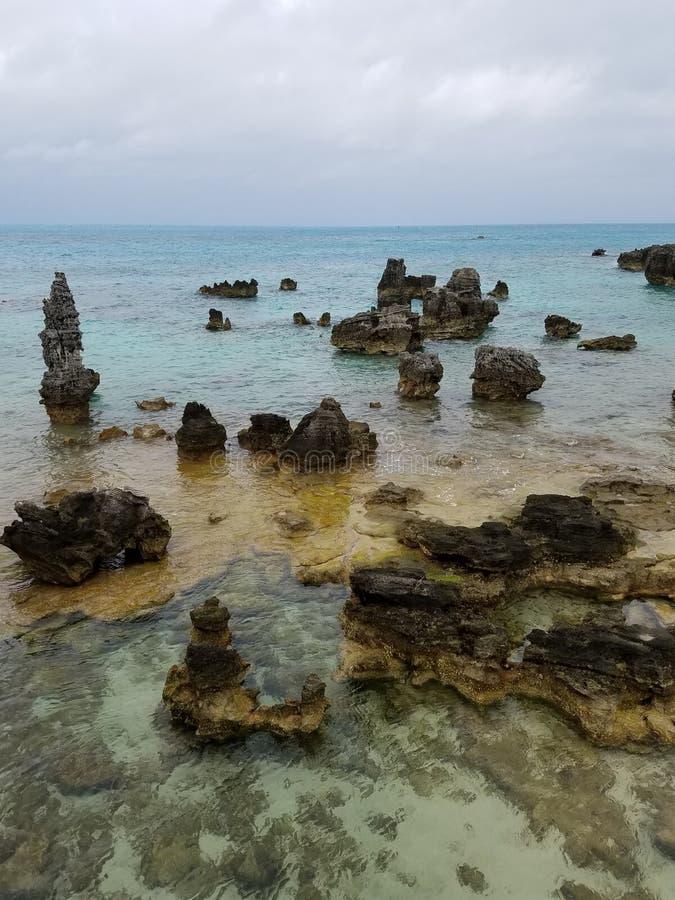 由海的烟草海湾 免版税库存图片