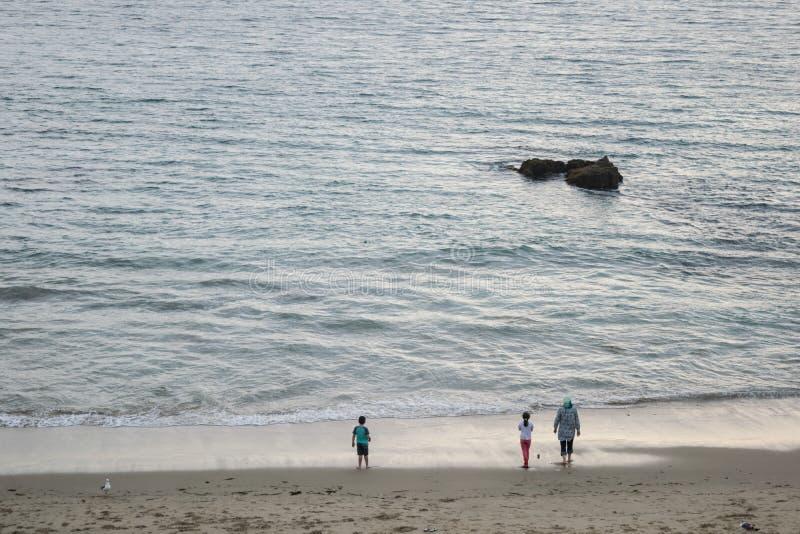 由海滩的人们 库存照片