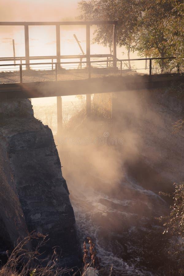 由湖的一个有薄雾的早晨 树剪影与太阳射线的 免版税库存图片
