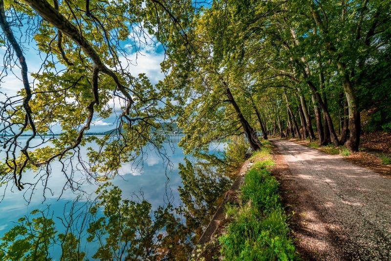 由湖的乡下公路 美好的不可思议的自然场面 库存图片