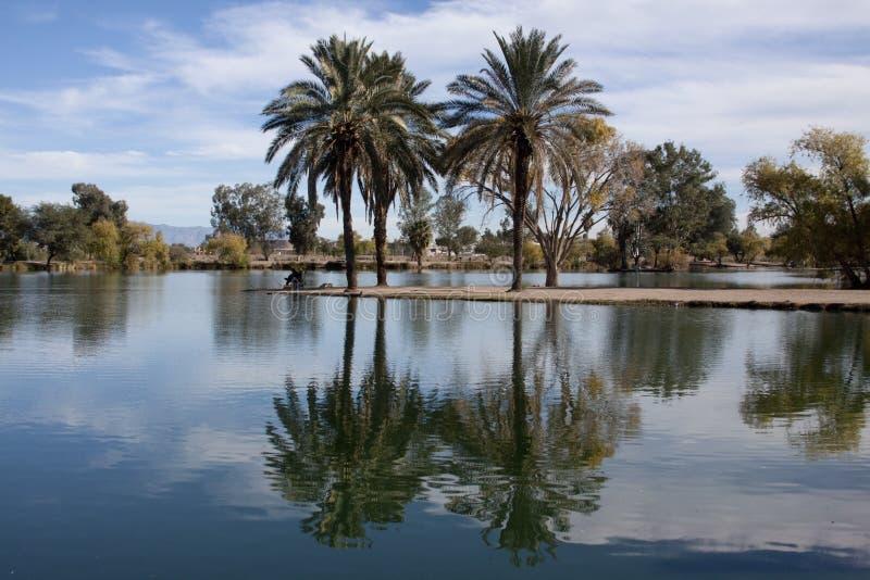 由湖的平安的公园 库存图片