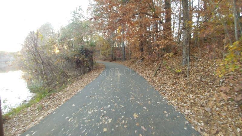 由湖的秋天 库存图片