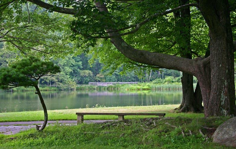 由湖的空的长凳 免版税库存照片