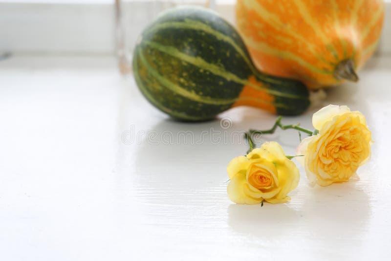 由窗口的黄色玫瑰 库存图片