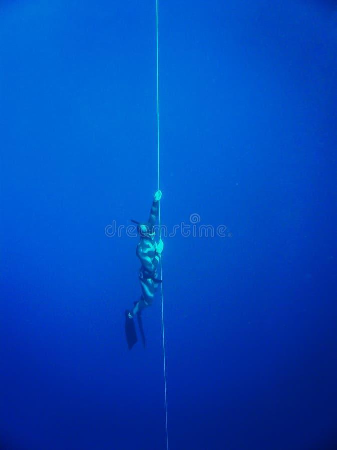 由绳索的潜水的自由的潜水者在红海,埃及,宰海卜 免版税图库摄影