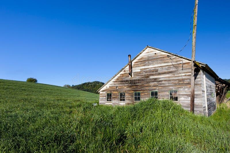 由象草的小山的老棚子 免版税库存图片