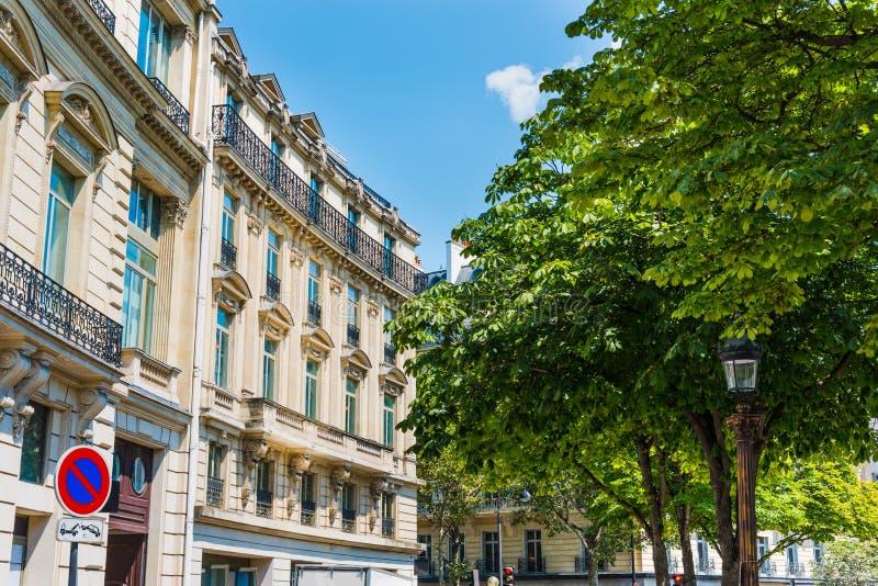 由豪华大厦的绿色树在巴黎 免版税库存图片